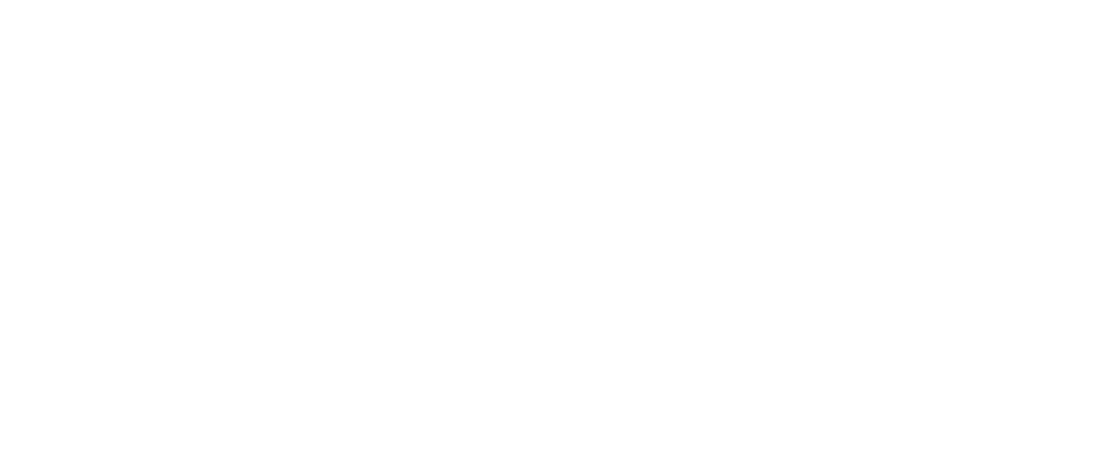 logo YourPress Media wit